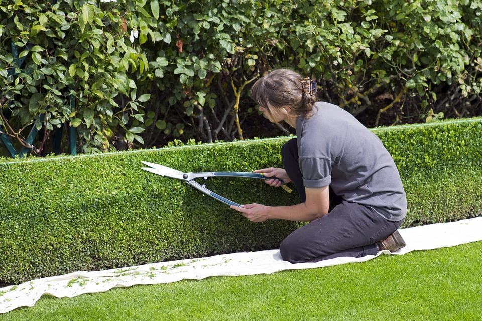 Service de mise à disposition pour espaces verts